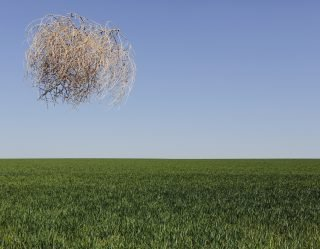 Tumbleweeds Are Completely Drowning This Town in California