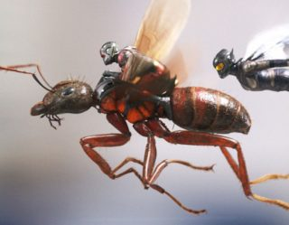 Mandatory Movie Battles: 'Ant-Man And The Wasp' VS 'Honey, I Shrunk The Kids'