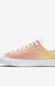 All Star Pride Mesh Low Top