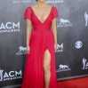 49th Annual Academy of Country Music Awards at MGM