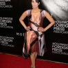 The Hollywood Foreign Press Association Grants Banquet