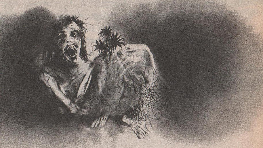 Scary Stories To Tell In the Dark Stephen Gammell
