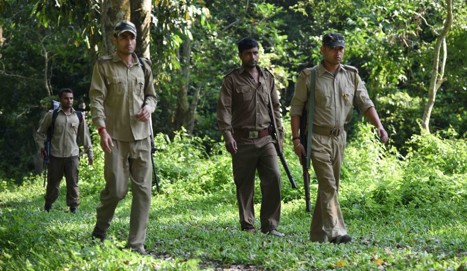 In this photograph taken on June 2, 2016, Indian forest rangers patrol in Kaziranga National Park, some 250kms east of Guwahati. As night falls over the lush plains of India's Kaziranga national park, a small group of lightly armed forest guards sets out on foot to protect the world's largest population of one-horned rhinos. These men with their ageing rifles and small plastic torches are on the front line of the battle against increasingly sophisticated international poaching networks that prey on the rare animals, entering the park under cover of darkness to kill them for their horns. / AFP / Biju BORO / To go with 'India-Conservation-Poaching' FEATURE by Claire Cozens (Photo credit should read BIJU BORO/AFP/Getty Images)