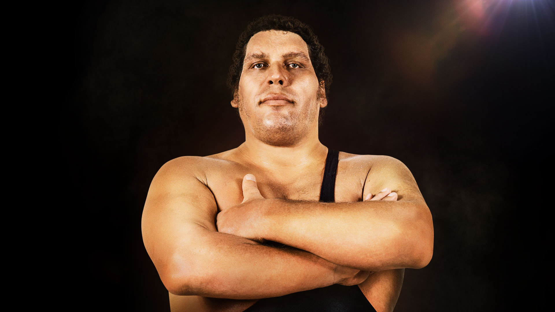'Andre The Giant'