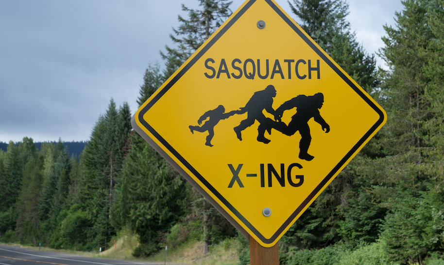 Walk Like Sasquatch