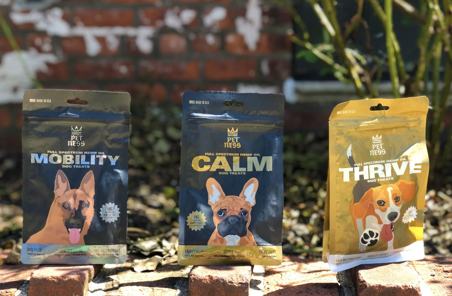 Pet-Ness CBD Dog Treats