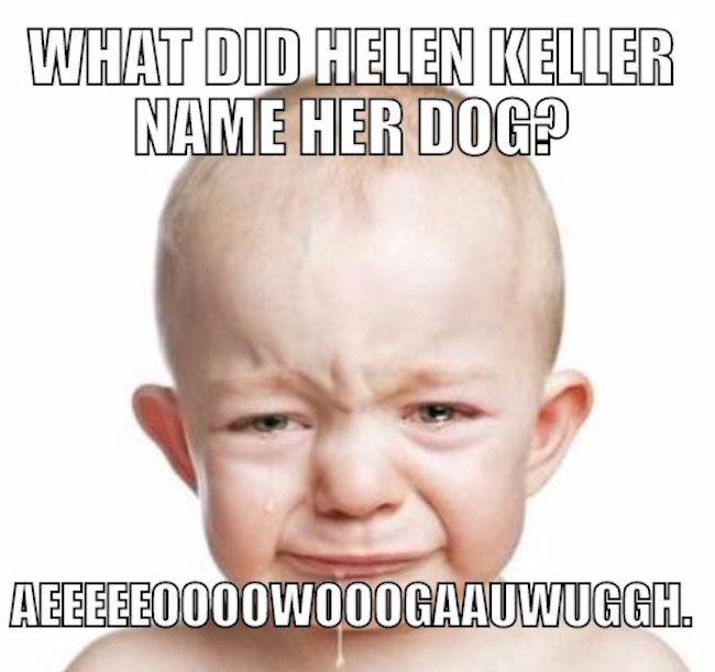 What did Helen Keller name her dog?