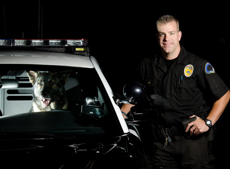 Mandatory Weird News: Dog Steals Cop Car, Eats Officer's Beef Jerky